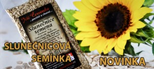 slunecnicova_seminka